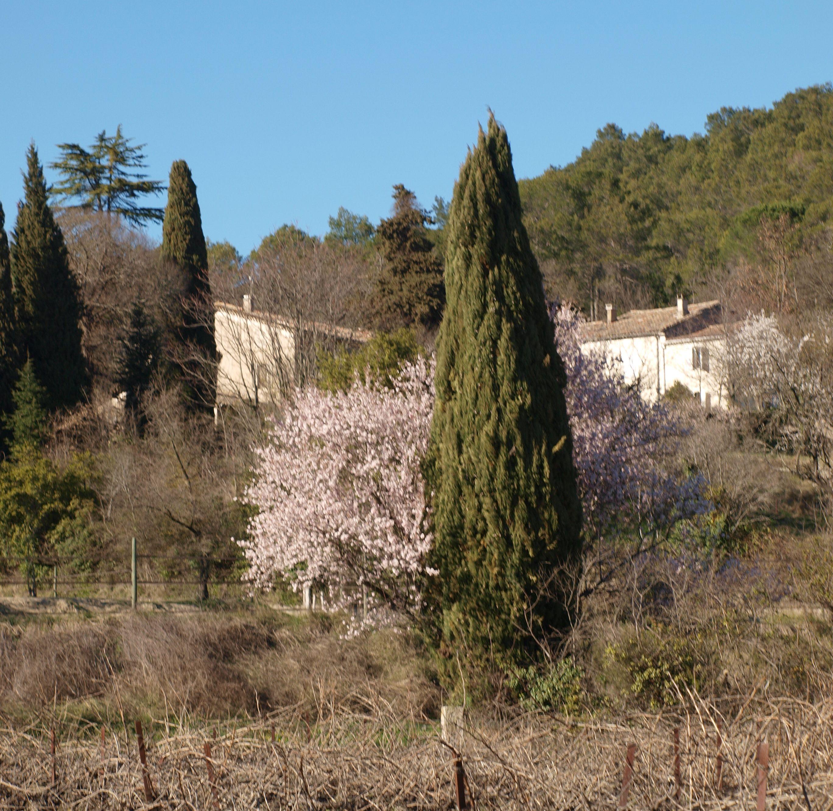Location Vacances Gite Rural Dans Le Gard Avec Piscine